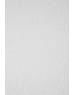 Ivory Board Paper 246g Ryps...