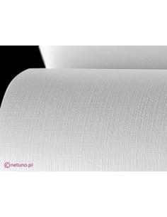 Aster Paper 250g Grid White...
