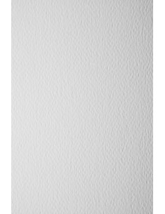 Prisma Paper 160g Bianco...