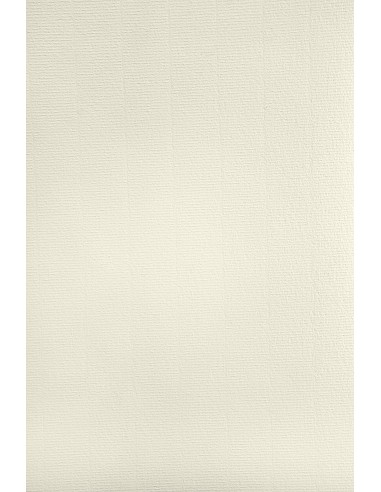 Aster Laid Paper 220g Ivory Pack of 20A4