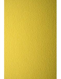 Prisma Paper 220g Girasole...