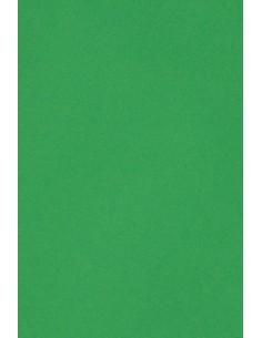 Burano Paper 250g B60 Verde...