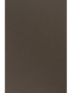 Papier Sirio Color 170g...