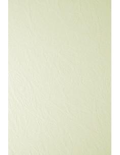Ivory Board Paper 246g...