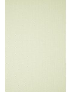 Ivory Board Paper 246g Ryps...