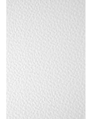 Ivory Board Paper 246g Hammer White...
