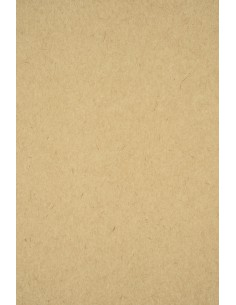 Recycled Kraft Paper LUX...