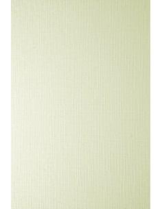 Ivory Board Paper 246g Grid...