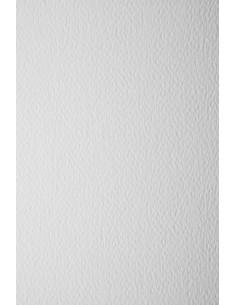 Papier Prisma 250g Bianco...