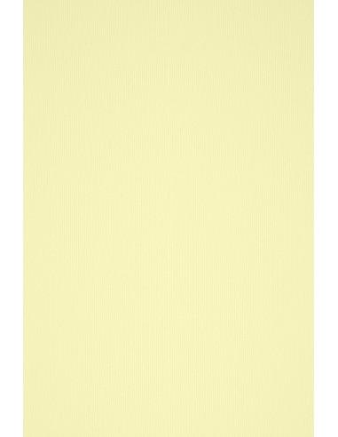 Acquerello Paper 100g Camoscio 72x101