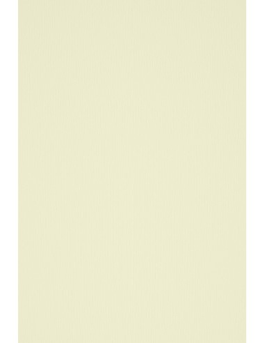 Acquerello Textured Paper 300g Avorio...
