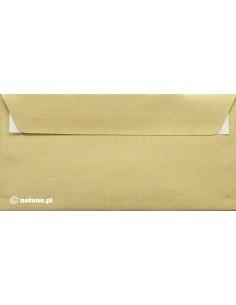 Galaxy Envelope DL...