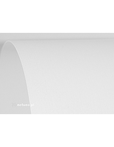 Aster Paper 250g Linen White 61x86