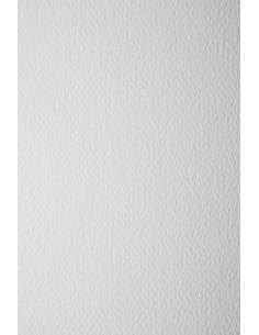 Prisma Paper 200g Bianco...